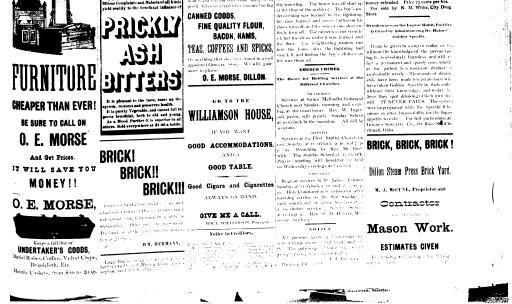 The Dillon Tribune (Dillon, Mont ) 1881-1941, July 06, 1888, Page 5