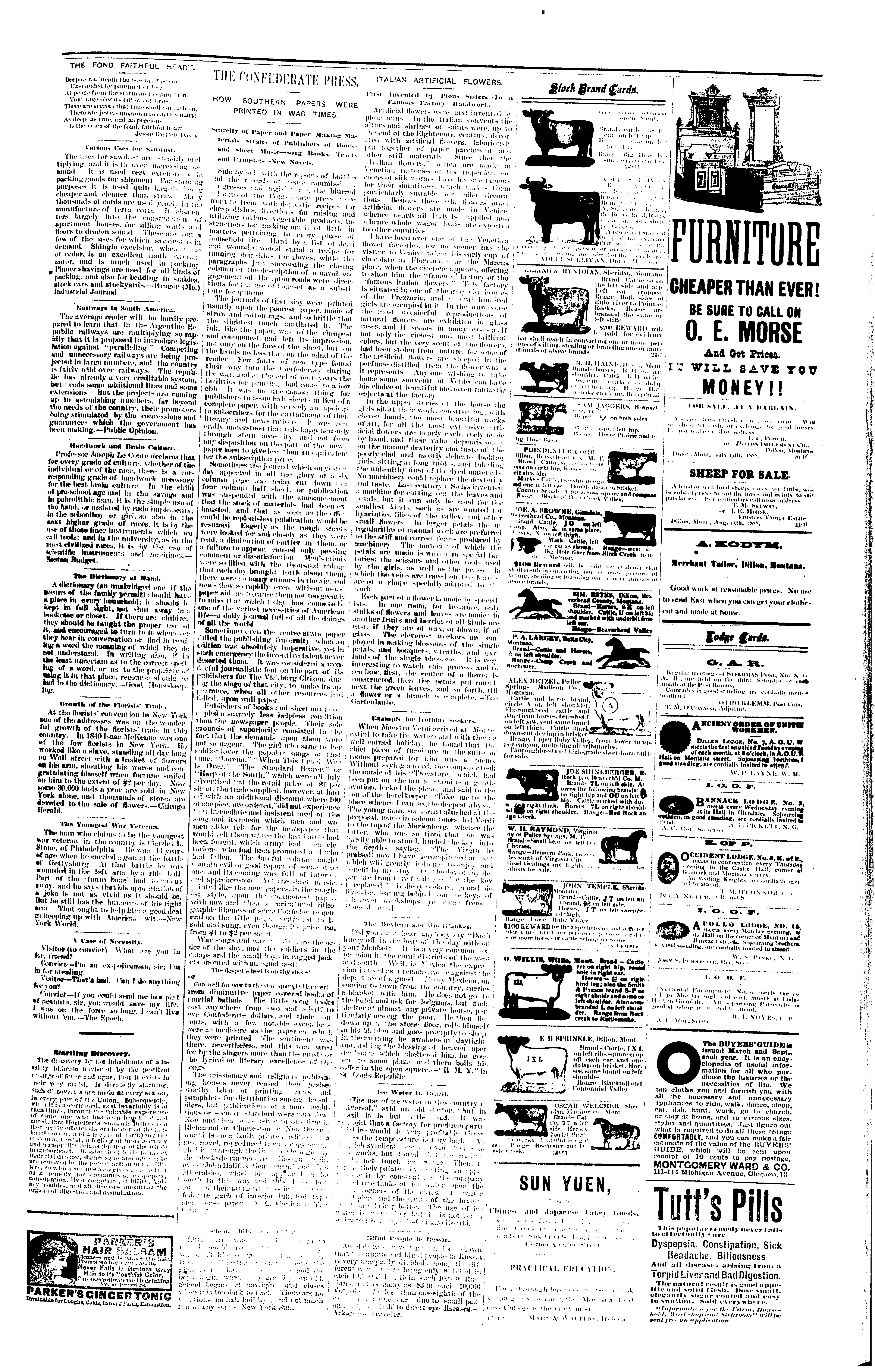 effd18e2e4af The Dillon Tribune (Dillon